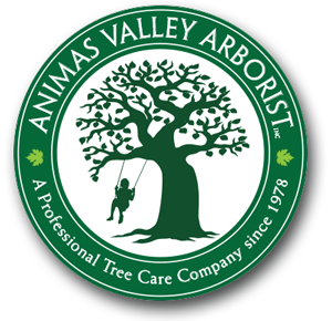 Animas Valley Arborist